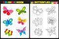 Sfarbenie kniha motýle
