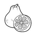 Coloring book for children fruits and vegetables ugli education game Stock Images