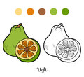 Coloring book for children fruits and vegetables ugli education game Stock Image