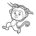 Coloring book, coloring page (monkey)