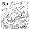 Coloring book, colorless alphabet. Letter N, numbat