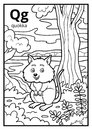 Coloring book, colorless alphabet. Letter Q, quokka Royalty Free Stock Photo