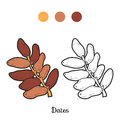 Coloring book: fruits and vegetables (dates)