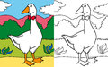 Coloring book goose Stock Image