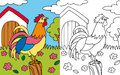 Coloring book hen rooster Royalty Free Stock Images