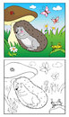 Coloring Book. Illustration of hedgehog and Insects for Children. Royalty Free Stock Photo