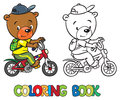 Coloring book of little funny bear on bicycle Royalty Free Stock Photo