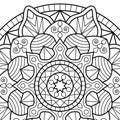 Coloring book pages. Mandala. Indian antistress medallion