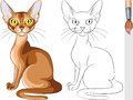 Coloring Book of red cat Abyssinian Stock Image