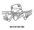 Coloring book, Red-eyed tree frog Royalty Free Stock Photo