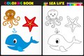 Coloring book sea life nature page for kids with colorful animals Royalty Free Stock Photo