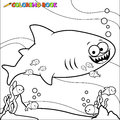 Coloring book shark underwater a black and white outline image of a and cleaner fish swimming page Stock Image