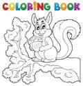Sfarbenie kniha veverička tému 1