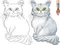 Coloring Book of Tiffany cat Royalty Free Stock Photography