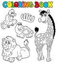 Coloring book with tropic animals 2 Royalty Free Stock Photo