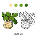 Coloring book, vegetables, Kohlrabi