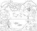 Coloring duck pond page with Royalty Free Stock Image