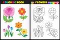 Sfarbenie strana kvety