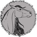 Coloring page with horse portrait