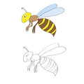 Coloring page for kids wasp vector image of with two smiling wasps on white background Stock Photography
