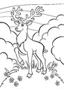 Coloring pages. Animals. Little cute deer. Royalty Free Stock Photo