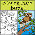 Coloring Pages: Birds. Little cute owl. Royalty Free Stock Photo
