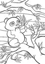 Coloring pages. Little cute panda. Royalty Free Stock Photo