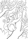 Coloring pages. Mother koala with her little cute baby. Royalty Free Stock Photo