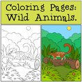 Coloring Pages: Wild Animals. Little cute numbat on the log