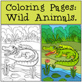 Coloring Pages: Wild Animals. Mother alligator