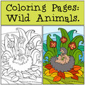 Coloring Pages: Wild Animals. Mother hedgehog holds little cute baby hedgehog.