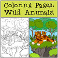 Coloring Pages: Wild Animals. Mother tiger with her baby