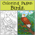 Coloring Pages: Wild Birds. Cute bold eagle sits and smiles. Royalty Free Stock Photo