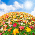 Colors of autumn colorful planet multicultural concept Stock Photography
