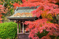 Colors of autumn leaves and little shrine japan natural scene change their into red brown arashiyama district kyoto Royalty Free Stock Image