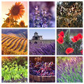Colors of provence france color palettes collage with photos Royalty Free Stock Image