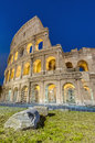 The colosseum amphitheater in rome italy or coliseum originally amphitheatrum flavium an elliptical amphitheatre Royalty Free Stock Photo