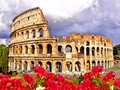 Colosseum of rome view the with flowers italy Stock Image