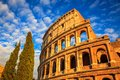 Colosseum and trees at sunset, Rome, Italy Royalty Free Stock Photo