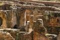 Colosseum Underground Detail Amphitheatrum Flavium Ancient Rome Italy Royalty Free Stock Photo