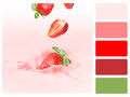Colour palette swatch with complimentary swatches fruit concept Stock Photo
