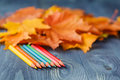 Colour pencils and autumn leaves on wooden background Royalty Free Stock Photo