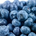 Colour picture of food blueberries for sale at a market stall Stock Image