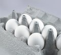 Colour picture of food close up eggs in a box Royalty Free Stock Image