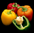 Coloured Capsicum peppers Stock Photos
