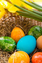Coloured eggs Stock Photo