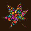 Colourful Autumn Leaves Stock Image