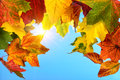 Colourful autumn leaves and the sun in the blue sky foreground framing clear background Royalty Free Stock Images
