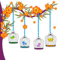 The Colourful Bird Cages