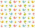 Colourful birds pattern